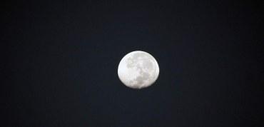 Noche de Bingo y luna llena en La Joya