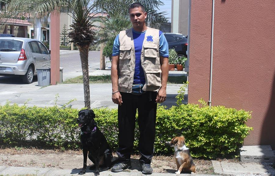 Entrenar a nuestros perros para ganar su corazón