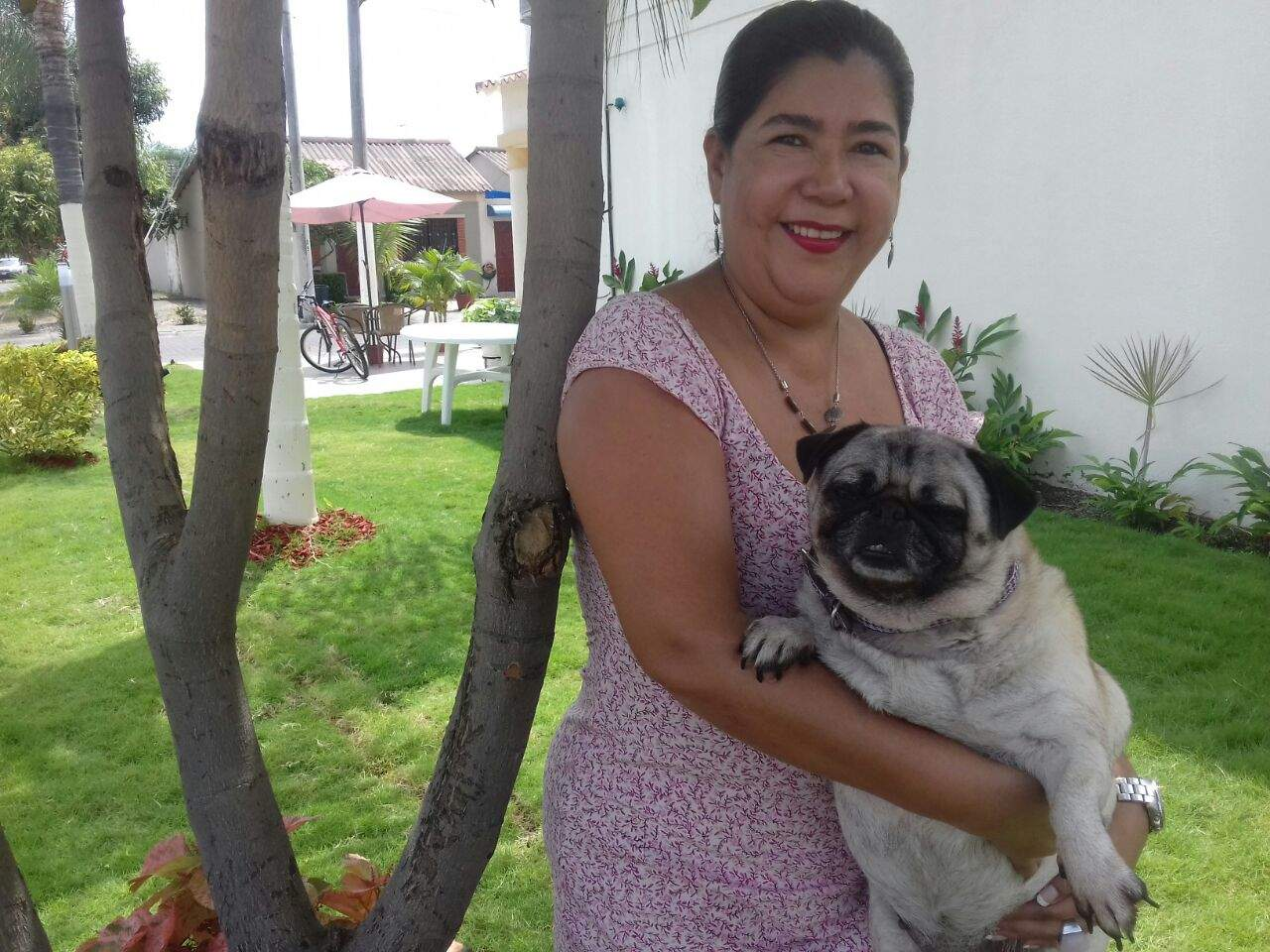 Rescatar una mascota como muestra de amor
