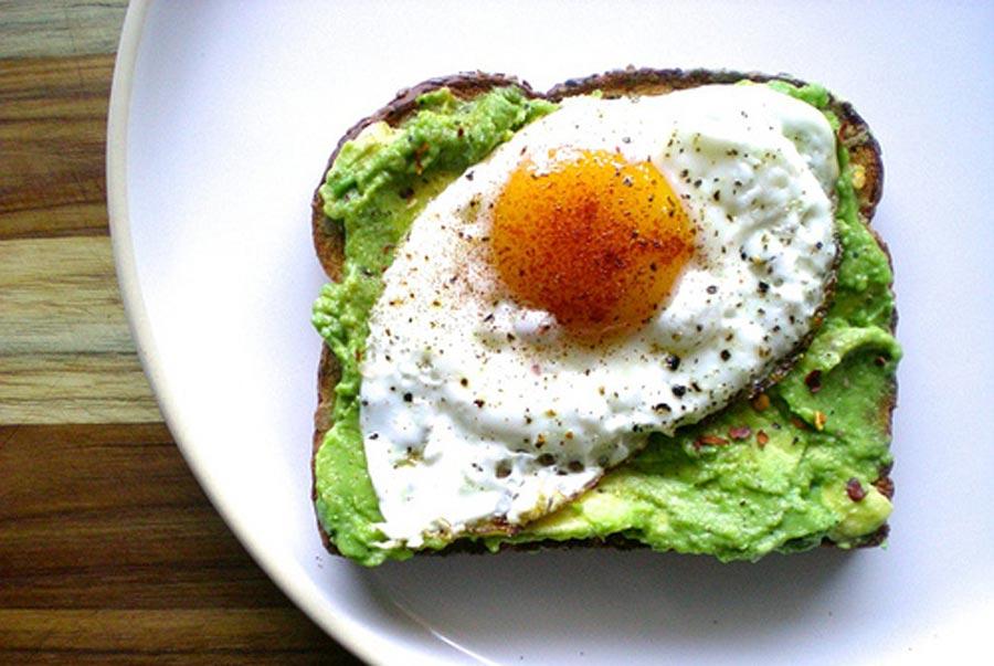 las avo toast son una tendencia mundial