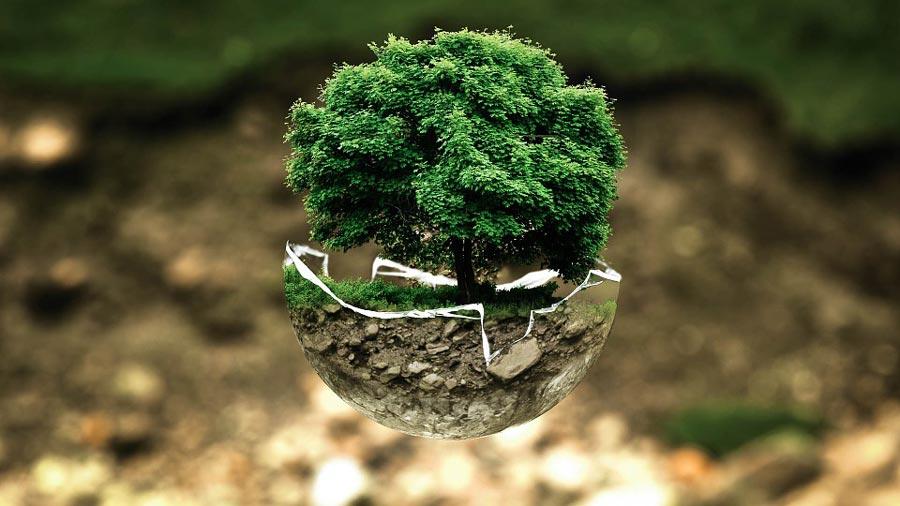¿Cómo se reduce al mínimo el impacto de la actividad humana en el planeta?