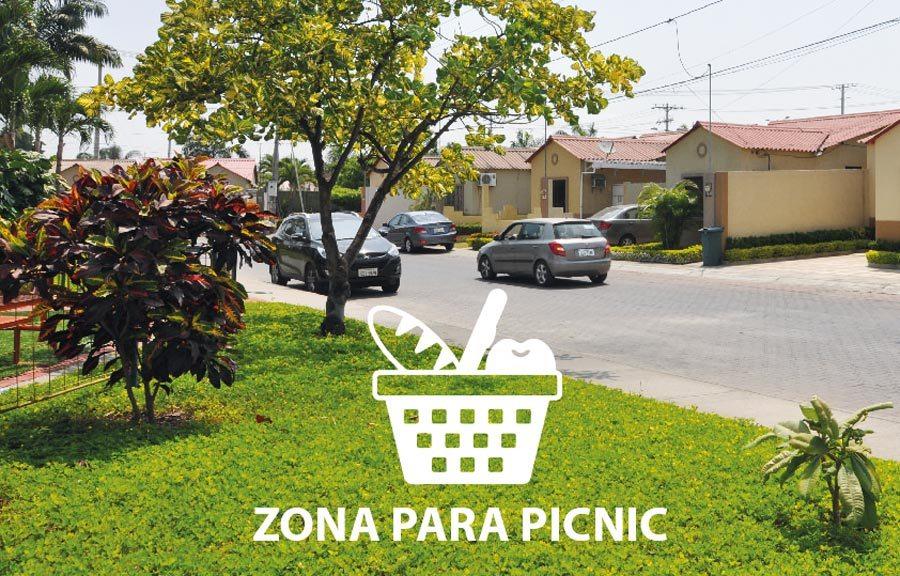 Domingos de picnic