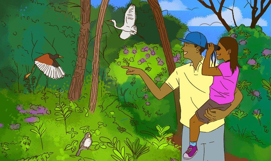 Sabías que puedes ver varias especies de aves en esta Ciudad para Vivir